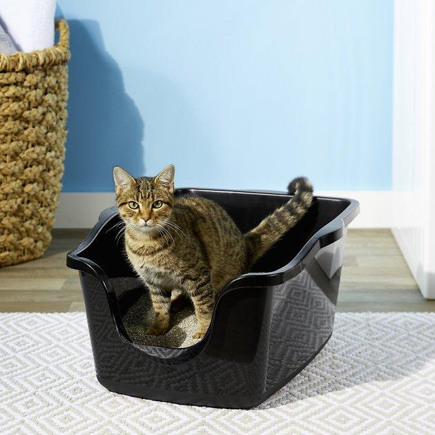 ทรายแมวยี่ห้อไหนดี